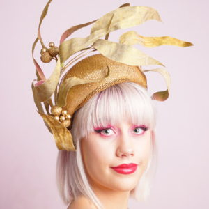 Eucalyptus silk leaf Crown